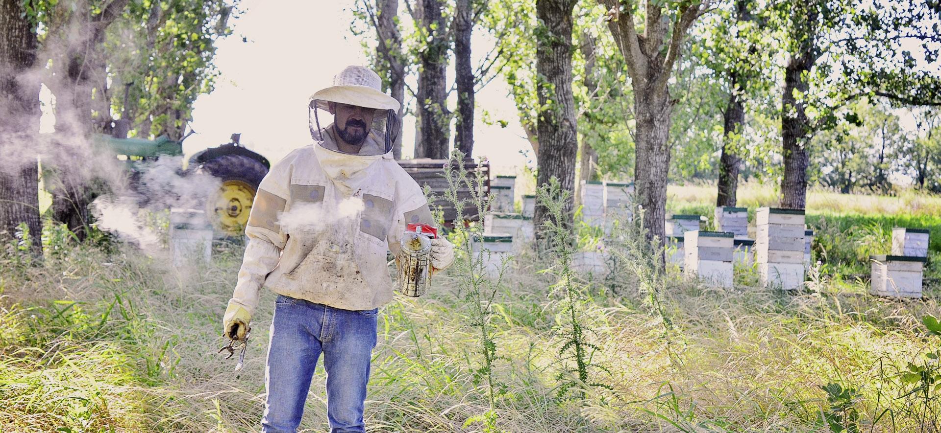 Capacitación laboral en apicultura